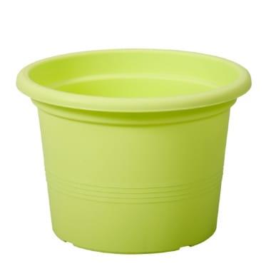 Puķu pods Campanula, zaļš, 13 cm