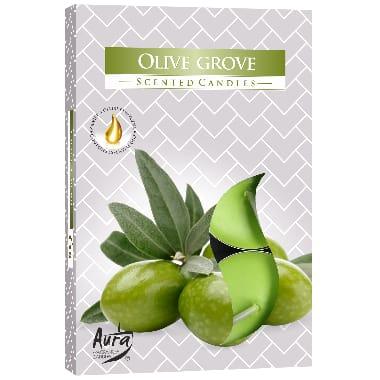 Aromātiksās sveces olīvu, 6 gab.