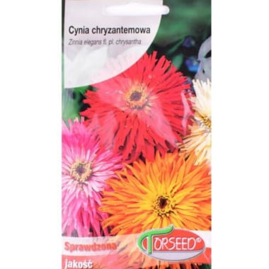 Cinnijas krizantēmu Torseed, 1 g