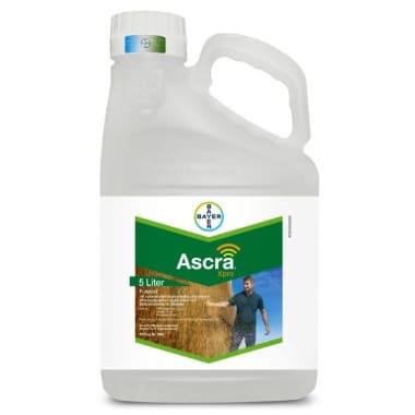 Ascra Xpro, 5 L