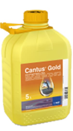 Cantus Gold, 5 L