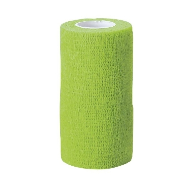 Elastīgā saite zaļa,10 cm