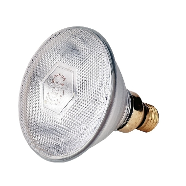 Sildlampa 100 W balta, Philips
