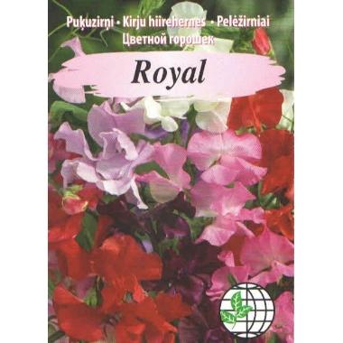 Puķuzirņi Royal Mix krāsaini, Agrimatco, 2 g