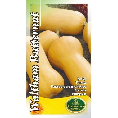 Ķirbis Waltham Butternut, Kurzemes sēklas, 2 g