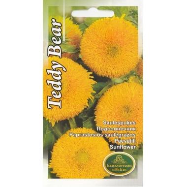 Saulespuķes Teddy Bear, Kurzemes sēklas, 2 g