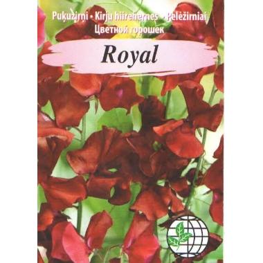 Puķuzirņi Royal tumši sarkani, Agrimatco, 2 g