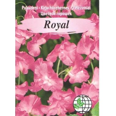 Puķuzirņi Royal rozā, Agrimatco, 2 g