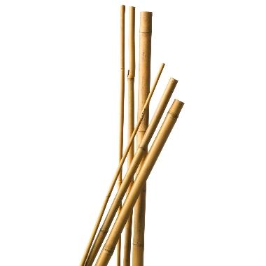 Bambusa mietiņi augu atbalstīšanai 60cm, Nature, 10 gab.