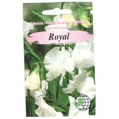 Puķuzirņi Royal, balti, 2 g